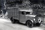 Camion type MC plantation en Algérie