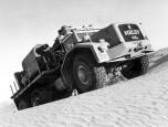 T100 n°2 Hassi Messaoud dune