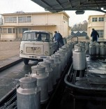 Berliet GAK 1964 du lait Mont-Blanc