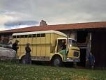 Berliet GAK bétaillère gros plan