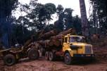 Berliet GBH280 grumier Afrique vue1