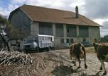 Berliet GAK ferme vaches 1962