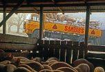 Berliet GBK aliments bétail Sanders vue 1